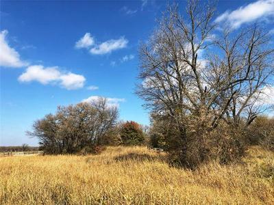 294 BEN HOLLAND RD, Bowie, TX 76230 - Photo 1