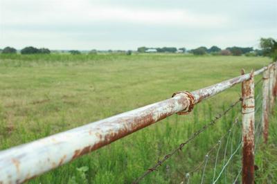 TRACT 3 W TRUCE ROAD, Jacksboro, TX 76458 - Photo 1