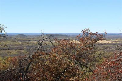 0006 CLAYTON MOUNTAIN ROAD, Gordon, TX 76453 - Photo 2