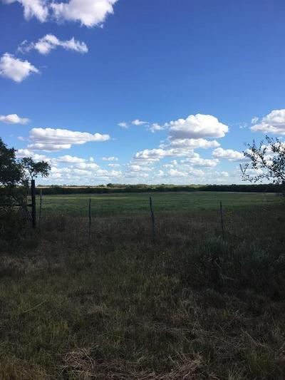 000 PASTUSEK, Megargel, TX 76370 - Photo 1