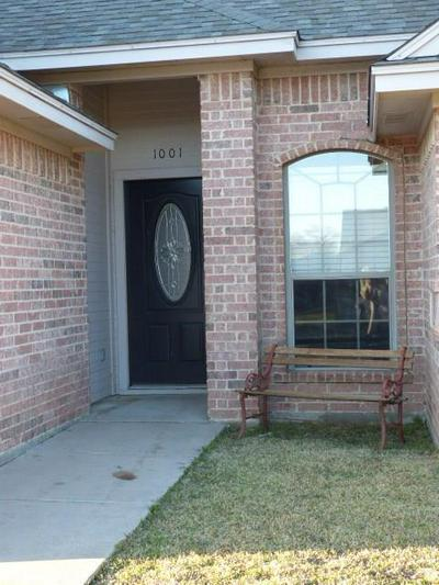 1001 TURKEY CREEK CT, BRIDGEPORT, TX 76426 - Photo 2