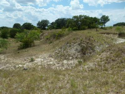 2645 COUNTY ROAD 294 N, Early, TX 76802 - Photo 1