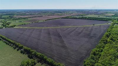 TBD COUNTY ROAD 1067, Greenville, TX 75401 - Photo 2