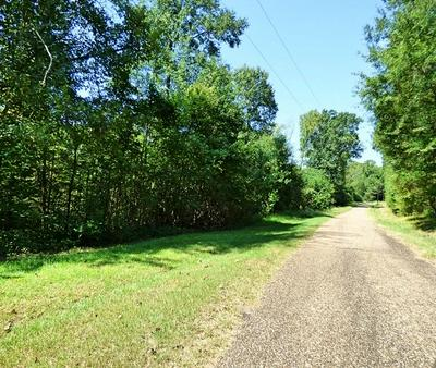 LOT 8 CR 3333, Omaha, TX 75571 - Photo 1