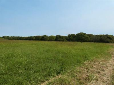 TBD COUNTY RD 2311, Decatur, TX 76234 - Photo 2