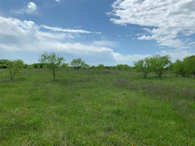 TBD DAGNAN ROAD, HOWE, TX 75459 - Photo 2
