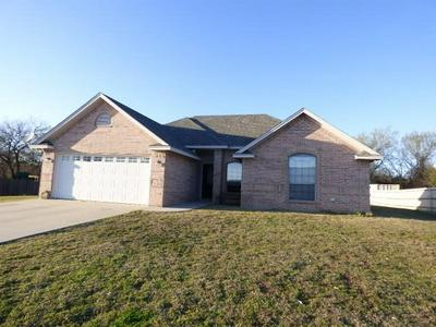 1001 TURKEY CREEK CT, BRIDGEPORT, TX 76426 - Photo 1