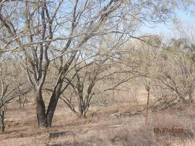 0000 COUNTY ROAD 171, Bangs, TX 76823 - Photo 2