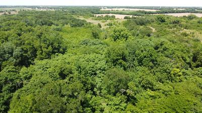 13.7 AC COUNTY RD 4411, Commerce, TX 75428 - Photo 2