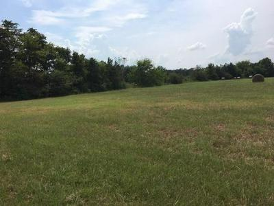 TBD COUNTY ROAD 4200, Winnsboro, TX 75494 - Photo 1
