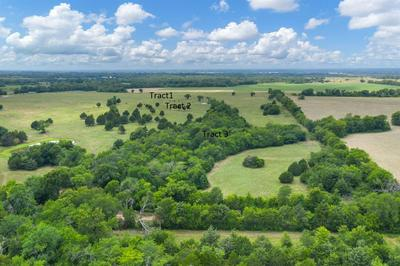 2653 CR 3210 - TRACT 3, Campbell, TX 75422 - Photo 2