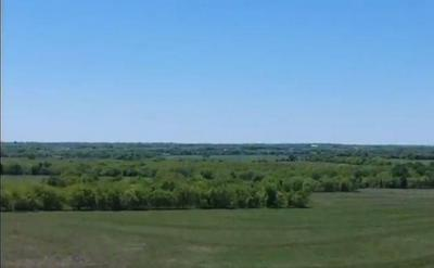 LOT 11 CR 1091, Celeste, TX 75423 - Photo 2