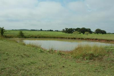 TRACT 2 W TRUCE ROAD, Jacksboro, TX 76458 - Photo 2