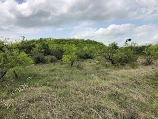1006 COUNTY ROAD 362, COLEMAN, TX 76834 - Photo 2