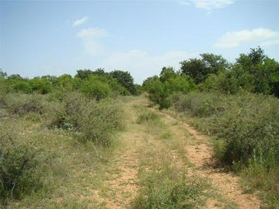 29 TRK2 CO ROAD 104, Cisco, TX 76437 - Photo 2