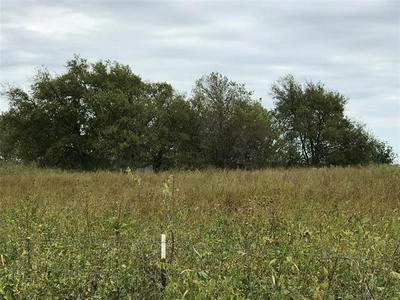 25.09AC SOUTHMAYD ROAD, Whitesboro, TX 76273 - Photo 2