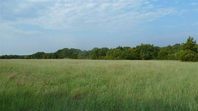 368 GREANEAD RD, Forestburg, TX 76239 - Photo 2