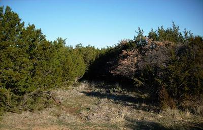 LT 117 GREEN BRIAR COURT, Possum Kingdom Lake, TX 76449 - Photo 2