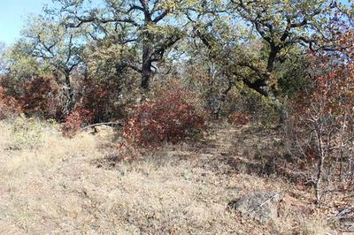 0007 CLAYTON MOUNTAIN ROAD, Gordon, TX 76453 - Photo 2