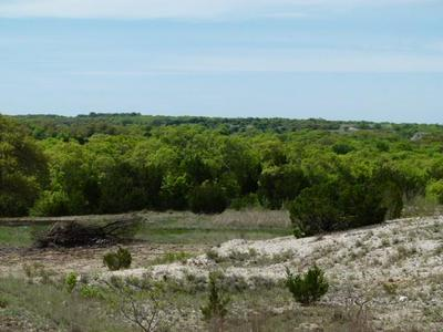 TBD COUNTY ROAD 352, Blanket, TX 76432 - Photo 1