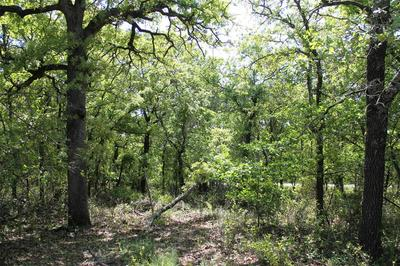 00 MINERAL SPRINGS, Poolville, TX 76487 - Photo 2