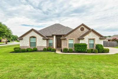 6303 ASPHODEL CT, Granbury, TX 76049 - Photo 1