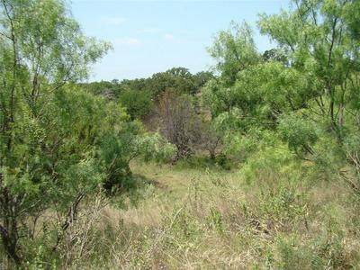 64 AC CO ROAD 104, Cisco, TX 76437 - Photo 2