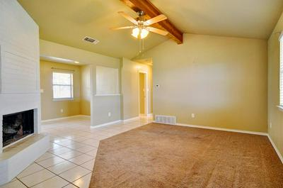 225 COUNTY ROAD 3699, SPRINGTOWN, TX 76082 - Photo 2