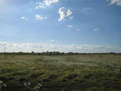 LOT 13 NE CR 1060, RICE, TX 75155 - Photo 1