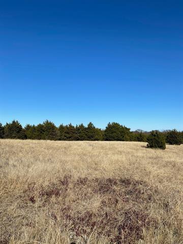 TBD9 BLEDSOE, Gunter, TX 75058 - Photo 1