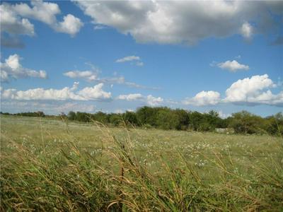 LOT 12 NE CR 1060 NE, RICE, TX 75155 - Photo 1