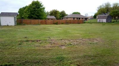 117 OVERHILL DR, SPRINGTOWN, TX 76082 - Photo 2