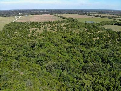 LOT 7 COUNTY RD 4519, Wolfe City, TX 75496 - Photo 2