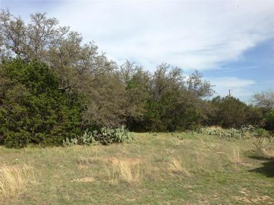 LOT 69 GLEN ABBEY CIRCLE, Possum Kingdom Lake, TX 76449 - Photo 2