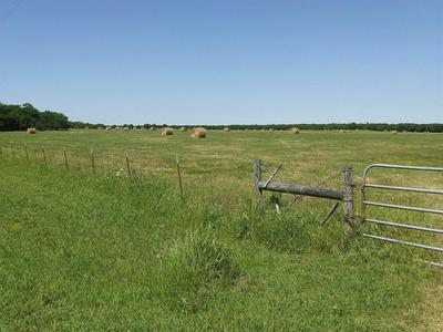 TBD FM 512, Commerce, TX 75428 - Photo 2