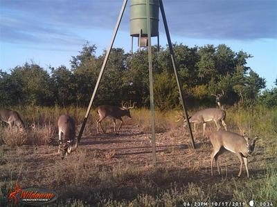 1071 FM 218 W, Zephyr, TX 76890 - Photo 1