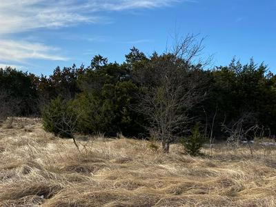 43172 WISTERIA DR & FRINGEWOOD DRIVE, Whitney, TX 76692 - Photo 1