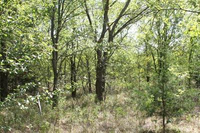 TRACT 1 CR 2260, Quinlan, TX 75474 - Photo 2