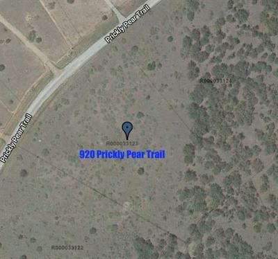 920 PRICKLY PEAR TRL, Gordon, TX 76453 - Photo 1