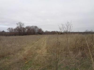 TBD OSWALT ROAD, Marietta, OK 73448 - Photo 2