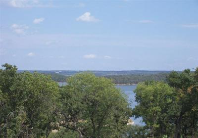 L361 MOONLIGHT BAY DRIVE, Chico, TX 76431 - Photo 1