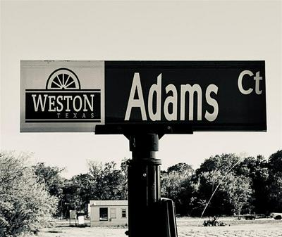 6 ADAMS COURT, Weston, TX 75097 - Photo 1
