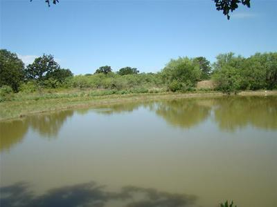 126.08 HWY 6, Eastland, TX 76448 - Photo 1