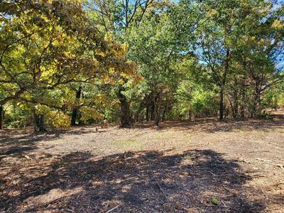 TBD WARD NEAL RD LOT 3 ROAD, Bells, TX 75414 - Photo 2