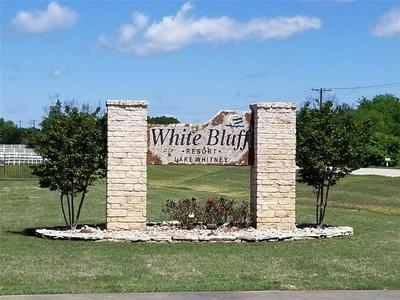 1508 DEERWOOD CT, Whitney, TX 76692 - Photo 2