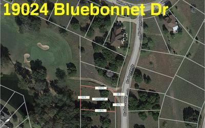 19024 BLUEBONNET DR, Whitney, TX 76692 - Photo 1