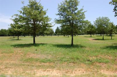 146 LA PALOMA CIR, Gordonville, TX 76245 - Photo 1