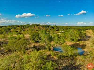 11394 COUNTY ROAD 417 LOT 10, May, TX 76857 - Photo 2