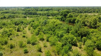 11.2 AC COUNTY RD 4411, Commerce, TX 75428 - Photo 1