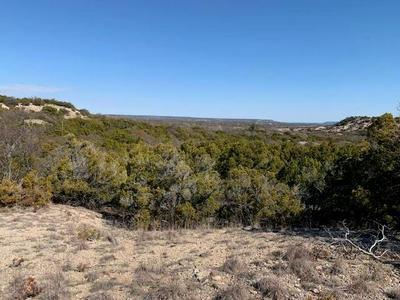 TBD COUNTY ROAD 654, Tuscola, TX 79562 - Photo 1